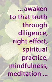 ... awaken to that truth through diligence, right effort, spiritual practice, mindfulness, meditation ...